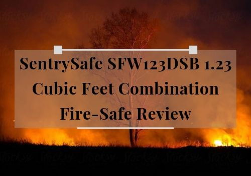 sentrysafe-sfw123dsb-review-combination-fireproof-safe