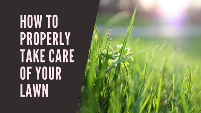 How to Properly Take Care of Your Lawn