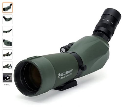 best spotting scopes 1