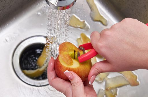 What to Look For in a New Waste Disposal for Your Kitchen1